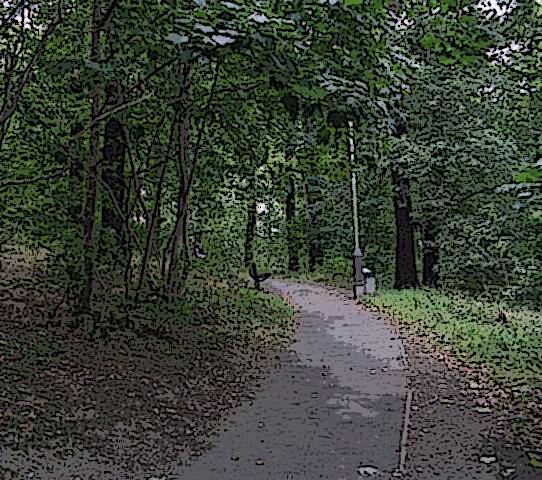 Gipton Woods 1