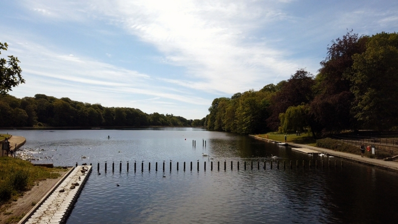 Waterloo Lake 8