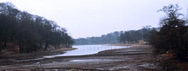 Waterloo Lake - Drained