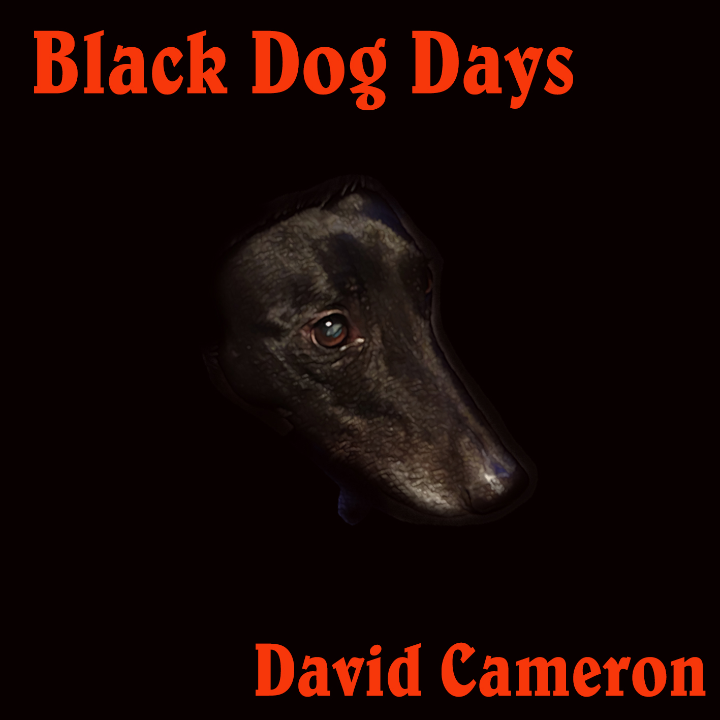 Black Dog Days Case cover 1
