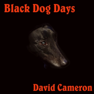 Black Dog Days Case cover 1